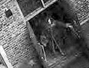 监视器拍下英国伦敦塔闹鬼事件