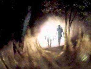 美国西部的UFO目击事件